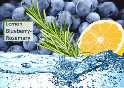 Lemon-blueberry-rosemary-fb