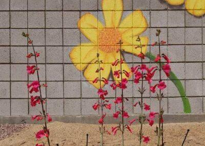 pollinator_garden_pic_2